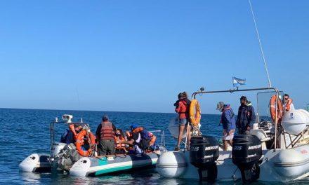 <span style='color:#020c7e;font-size:15px;'>En el Área Natural Protegida de Península Valdés</span></br>Analizan acciones por los residuos plásticos en playas de Chubut